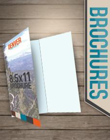 brochures, tri-fold, bi-fold