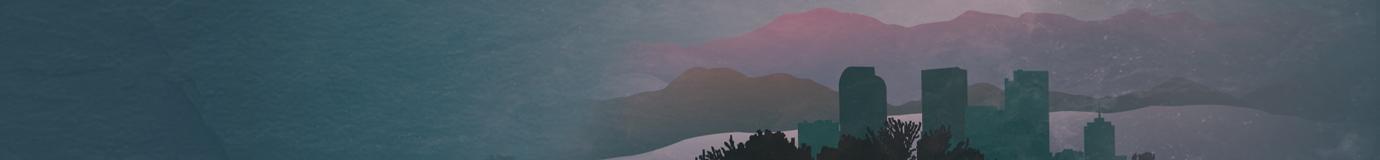 denver skyline banner