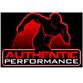 authentic performance logo